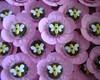 Forminhas decorativas para doces finos