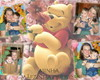 �lbum de fotos anivers�rio. Tema Pooh