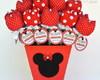 Vaso e 30 L�pis Tulipas- Minnie Vermelha