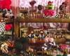 Festa Fazendinha Rosa ( Rustica )