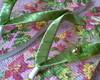 Chinelo decorado floral verde e rosa