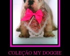 COLE��O MY DOGGIE  - BULLDOG FRANC�S