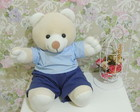 Papai Urso Plush