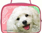 BOLSA DE MO BICHON