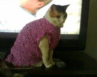 Roupa trico para pets, gatos, ces P