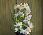 arranjo de orquidea bege