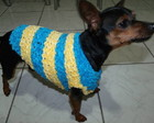 Roupa para cachorro, gato em trico PP