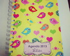 Agenda 2013 - Passarinhos