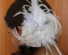 00160 Fascinator The Little Princess