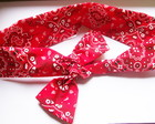 Headband Pin Up Bandana