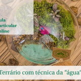 Aulas e workshops