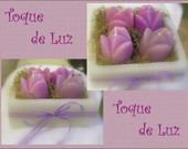 JARDIM COM 4 TULIPAS