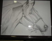 Desenho em Grafite- Cavalo
