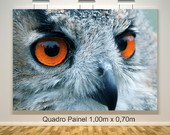Quadro Painel Srie Animais