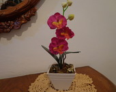 Vaso com Orquideas
