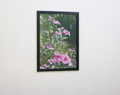 Poster Decorativo- Catharanthus (Flores)