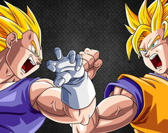 Painel Dragon Ball Z 1,5mx1,0m (mod2)