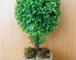 Bonsai Oval verde