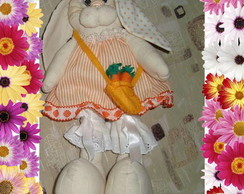 Coelho ( coelha Feliz)