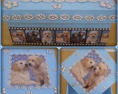 caixas mdf fotos animais de estima��o