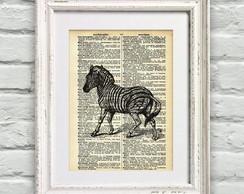 Poster P�gina de Dicion�rio Zebra
