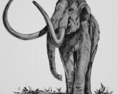 Mastodonte :: S�rie Tatoo