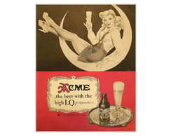 Placa MDF Retr�- Acme Beer - 278