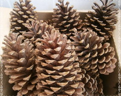 Pinha Natural para enfeite de Natal