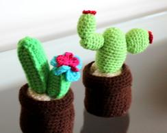 Cactos croch�