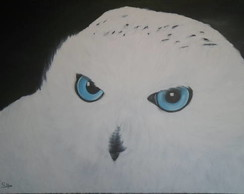 Pintura sobre tela - Coruja