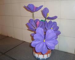 vaso de flor de eva  hibisco