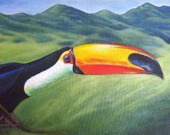 Quadro decorativo - Tucano - Tinta �leo