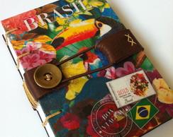 Diario de viagem s�rie Brasil - Tucano