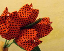 tulipa joaninha