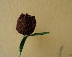 tulipa marrom com bolinhas