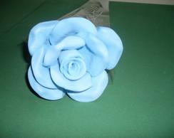 Rosa Eva G Azul Claro