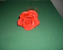 Rosa Eva G Vermelha