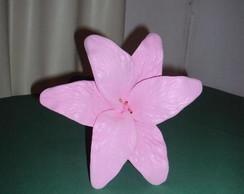 Flor de Eva L�rio Rosa