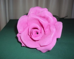 Rosa Eva G Rosa