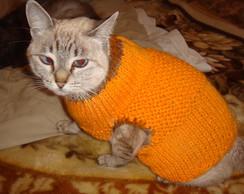 Roupa PET Gato
