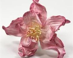 Rose Two Tone - Embalagem Com 1 Flor