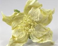 Wrinkle Rose - Embalagem Com 3 Flores