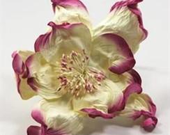 Wrinkle Rose Fuschsia Embalagem 6flores
