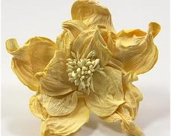 Rose Dk Yellow - Embalagem Com 12 Flores