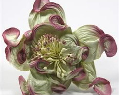Rose Green Mauve-Embalagem com 24 flores