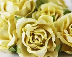 Dream Rose Lt Yellow - 6 Flores