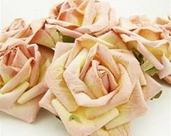 Large Cream Pink Rose- Embalagem 1 Rosa
