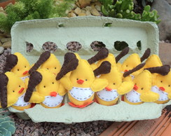 Pintinhos na Caixa de Ovos