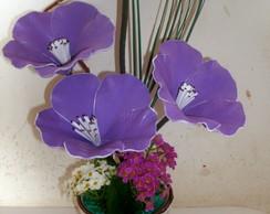 amar�lis lil�s c/ bordas brancas