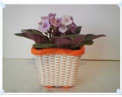 Vaso Mini para Violetas salm�o